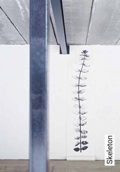 Bild: Tapeten - Skeleton
