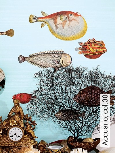 Bild: Tapeten - Acquario, col.30