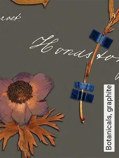 Bild: Tapeten - Botanicals, graphite