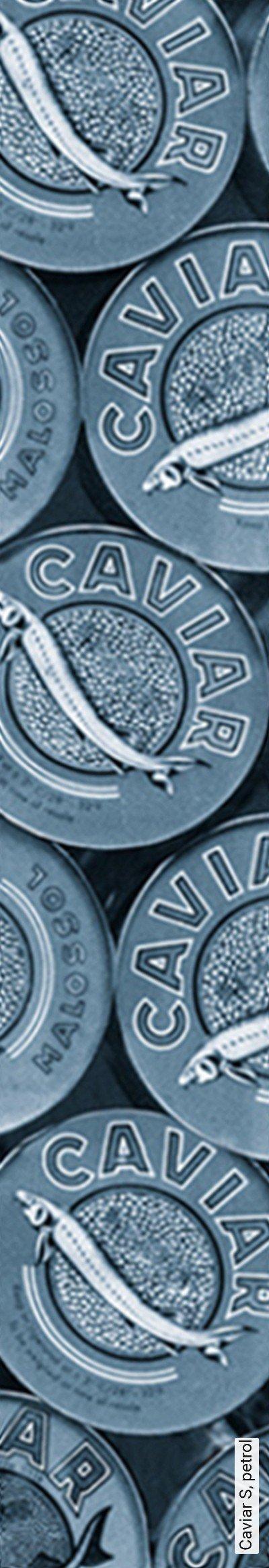 Bild: Tapeten - Caviar S, petrol