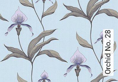 Bild: Tapeten - Orchid No. 28