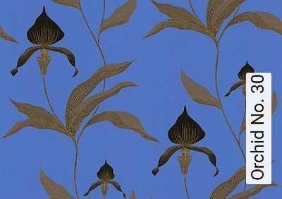 Bild: Tapeten - Orchid No. 30
