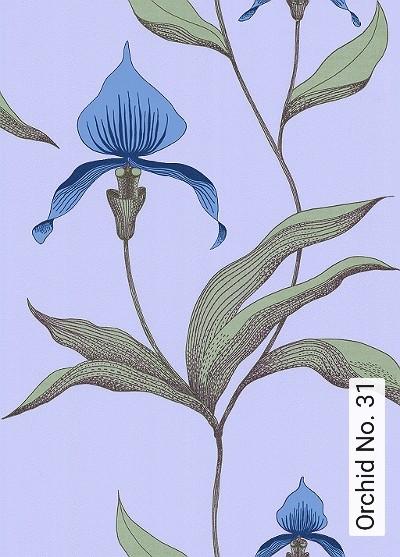 Bild: Tapeten - Orchid No. 31