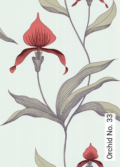 Bild: Tapeten - Orchid No. 33