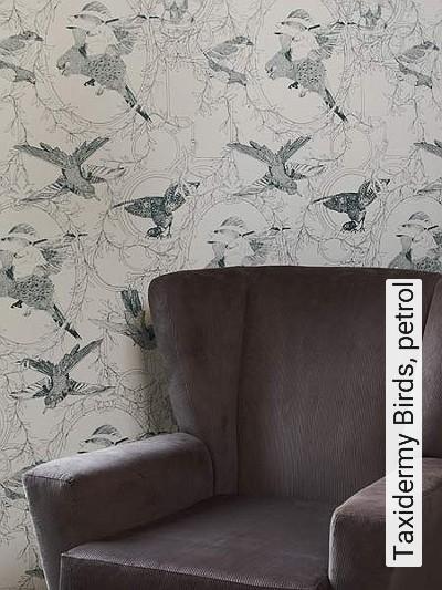 tapete taxidermy birds petrol die tapetenagentur. Black Bedroom Furniture Sets. Home Design Ideas