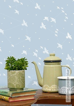 Bild Tapete - Star-ling, powder blue