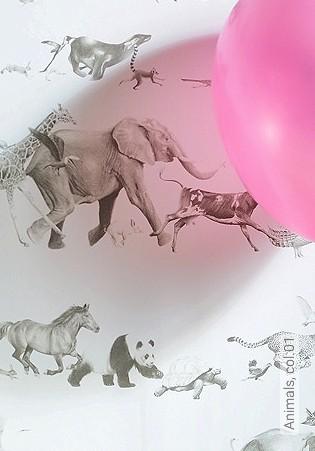 Bild Tapete - Animals, col.01