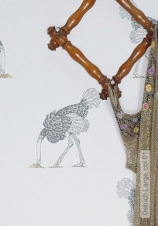 Bild Tapete - Ostrich Large, col.01
