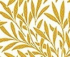 - Willow Yellow