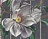 - Magnolia Frieze, col. 1
