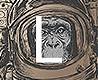 - Space Monkey, L