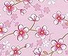 - cherry blossom, col.03