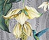 - Trailing Orchid, col. 2