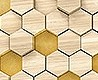 - Woodcomb Birch