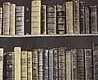 - New Antique Books, brown
