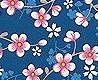 - cherry blossom, col.05
