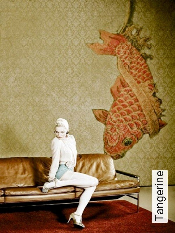 tapete tangerine die tapetenagentur. Black Bedroom Furniture Sets. Home Design Ideas