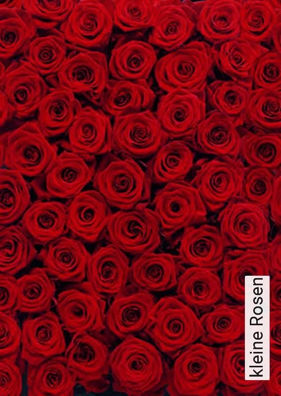 tapete kleine rosen die tapetenagentur. Black Bedroom Furniture Sets. Home Design Ideas